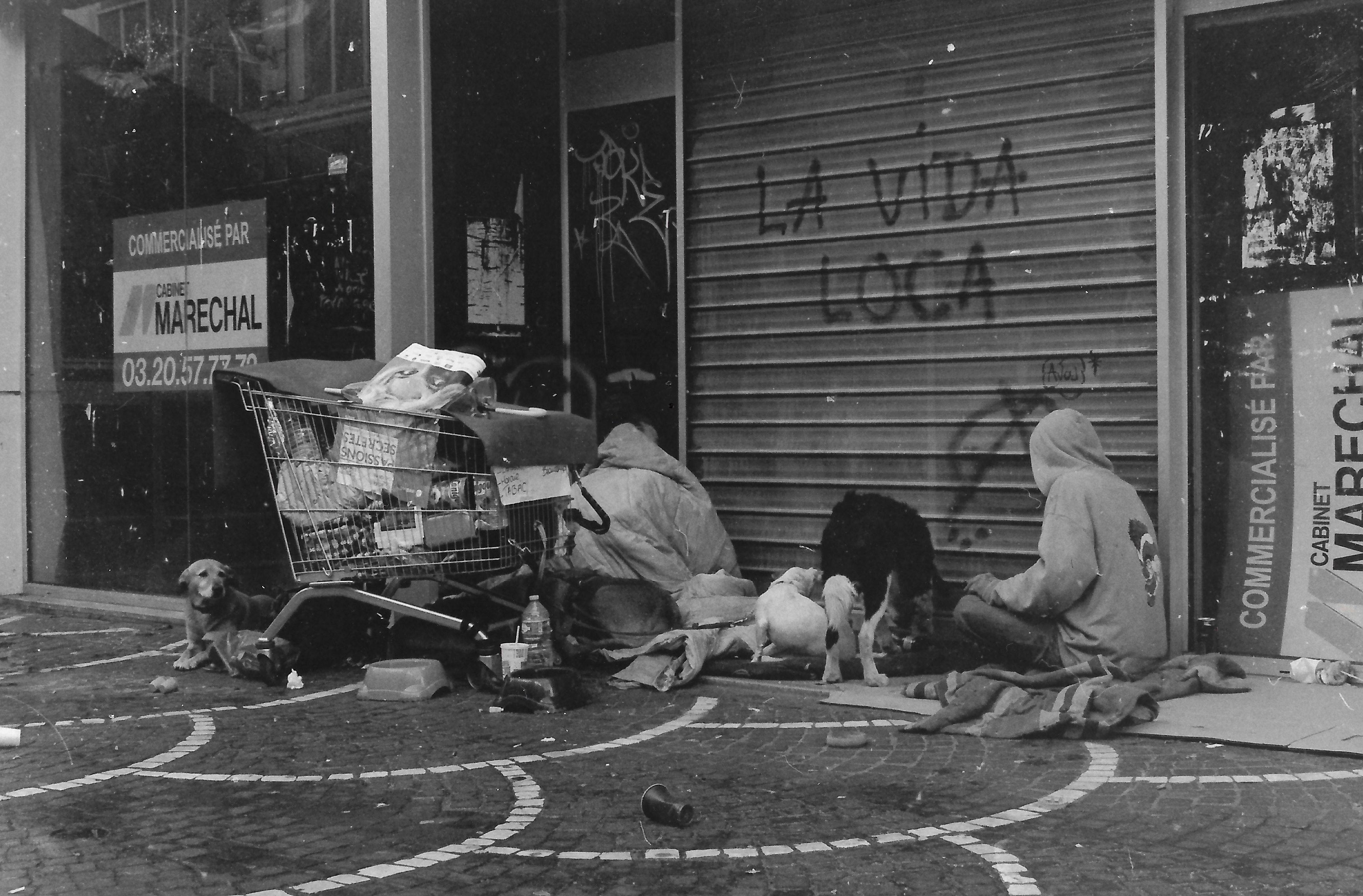 photographie argentique  u2013 zimmer pierre